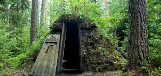 Forest Hut Hotel Weirdest Hotels around the world