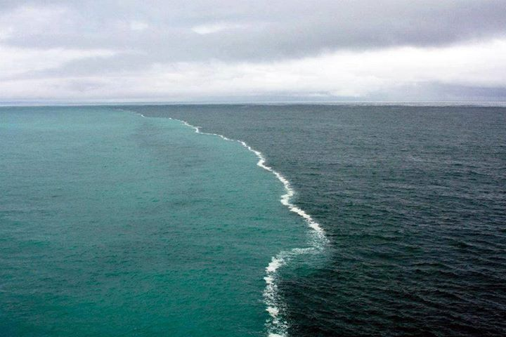gulf of alaska - oceans meet