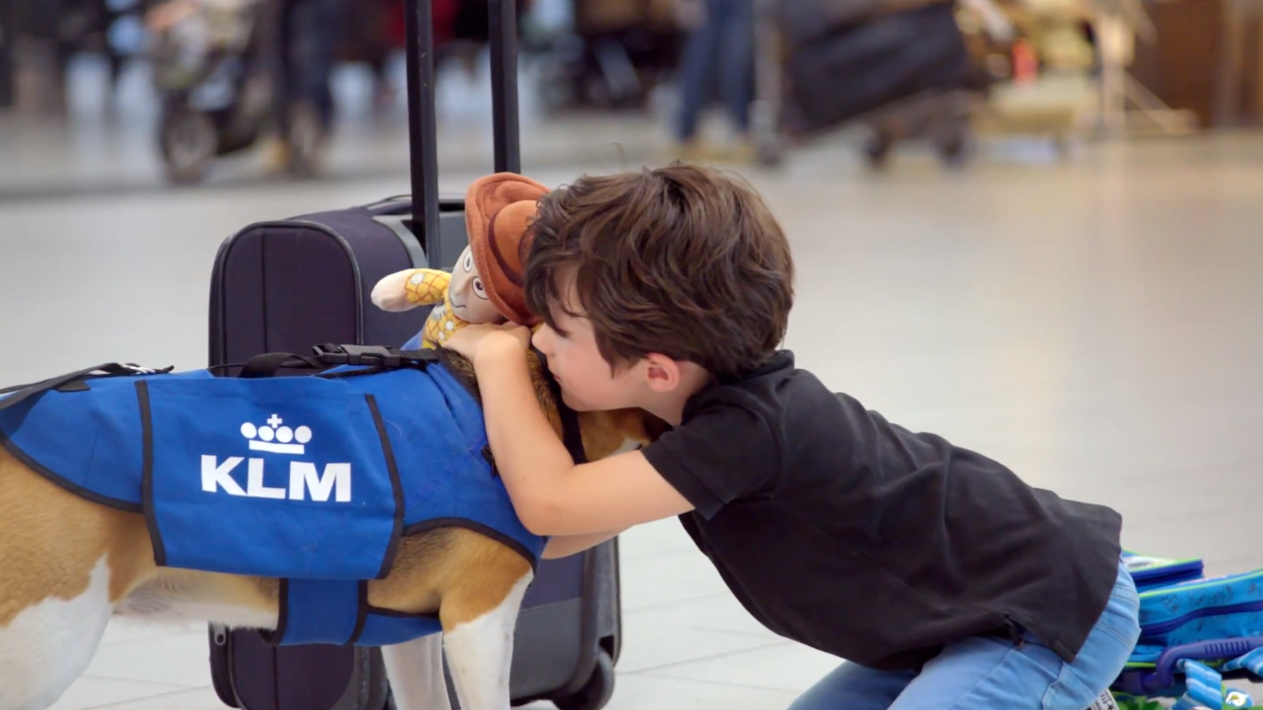 Beagle Returns Lost Items To Passengers